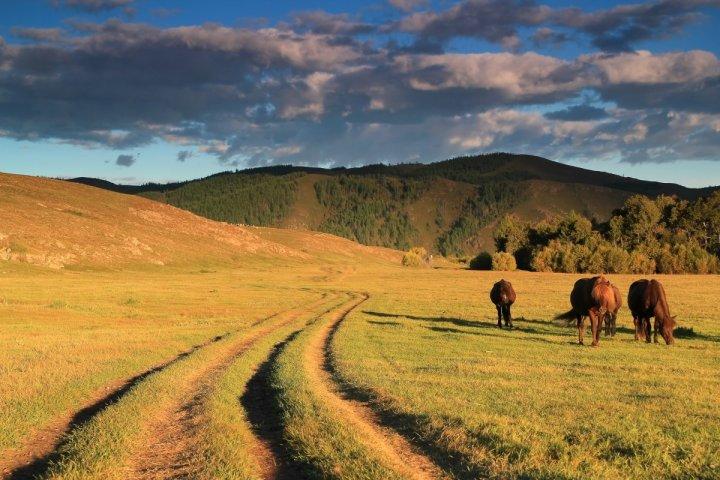 3-mongolia